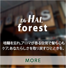 Dh-HAL AVEDA forest
